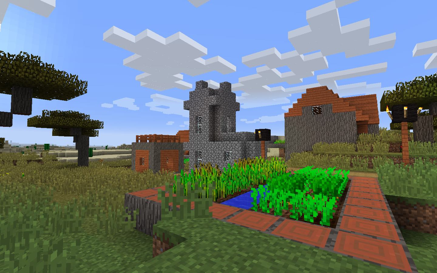 The savanna village in this Minecraft Seed