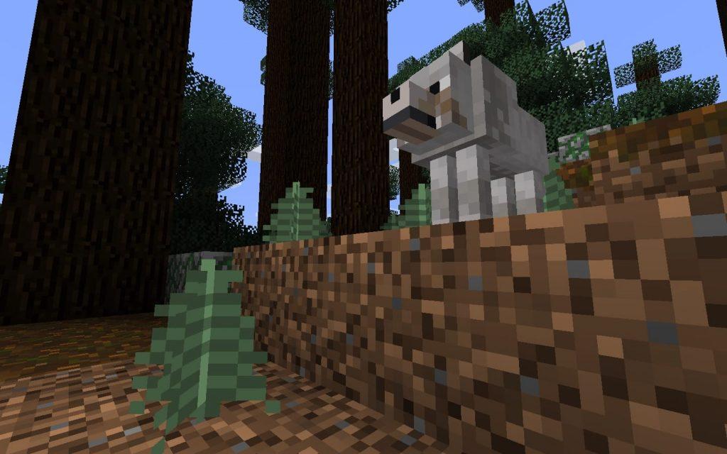Wolf Near Spawn