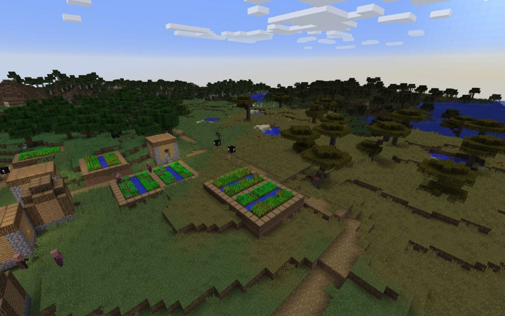 Biomes Surrounding Blacksmith Village