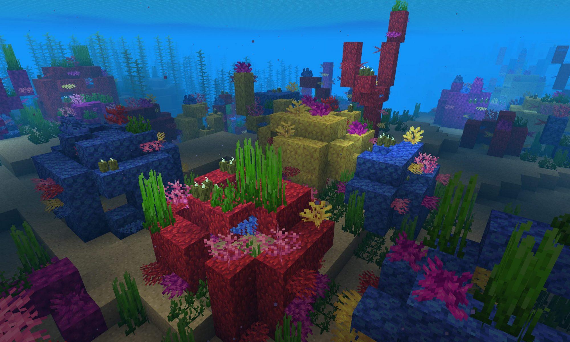 Coral Reef Seed