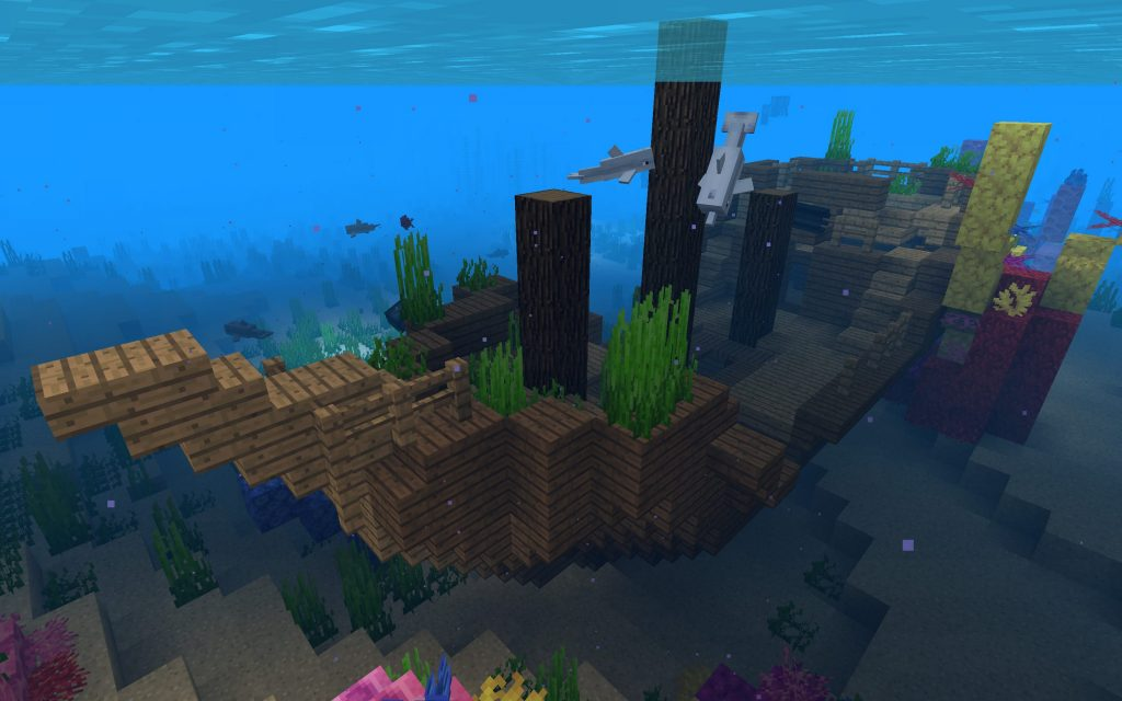 Shipwreck on the Coral Reef