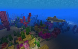 Minecraft Coral Reef Seed