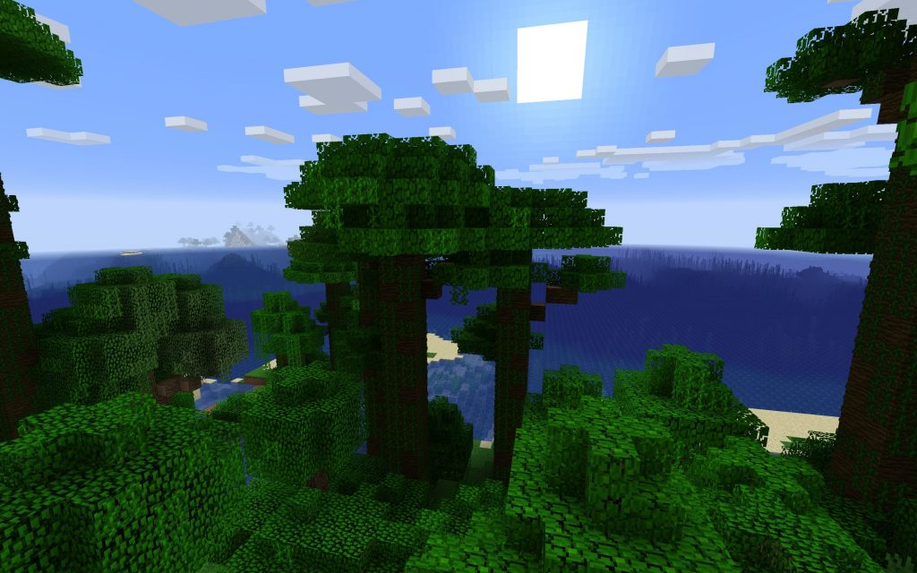 Spawn View of Ocean from Jungle