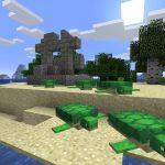 Minecraft Ocean Ruin Seed