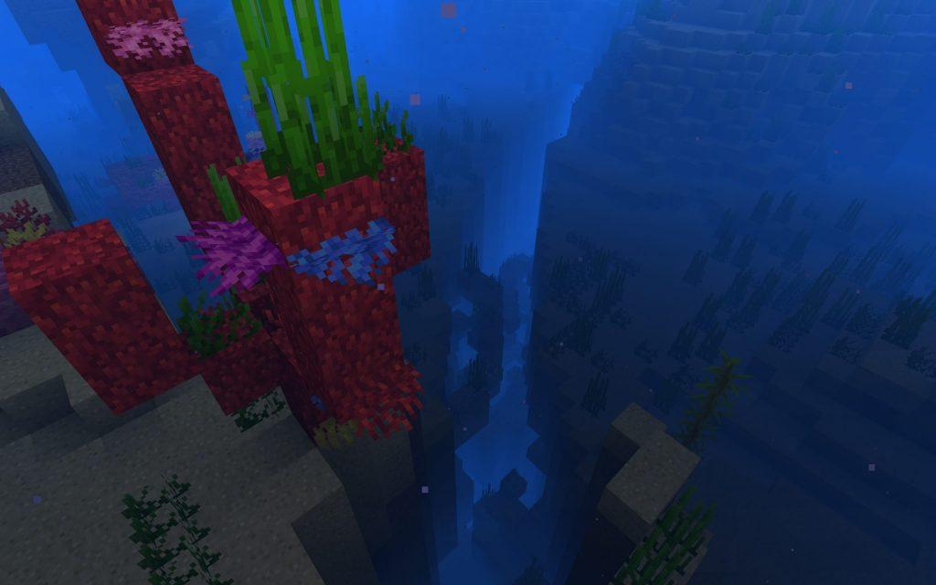 Coral Reef, Ocean Ravine