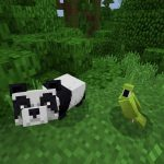 Panda Spotting in PE/Bedrock Jungle Seed