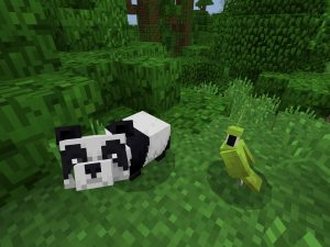 Baby Panda in Jungle Minecraft PE Seed