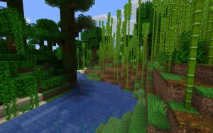 Minecraft Seed - Bamboo Forest Biome