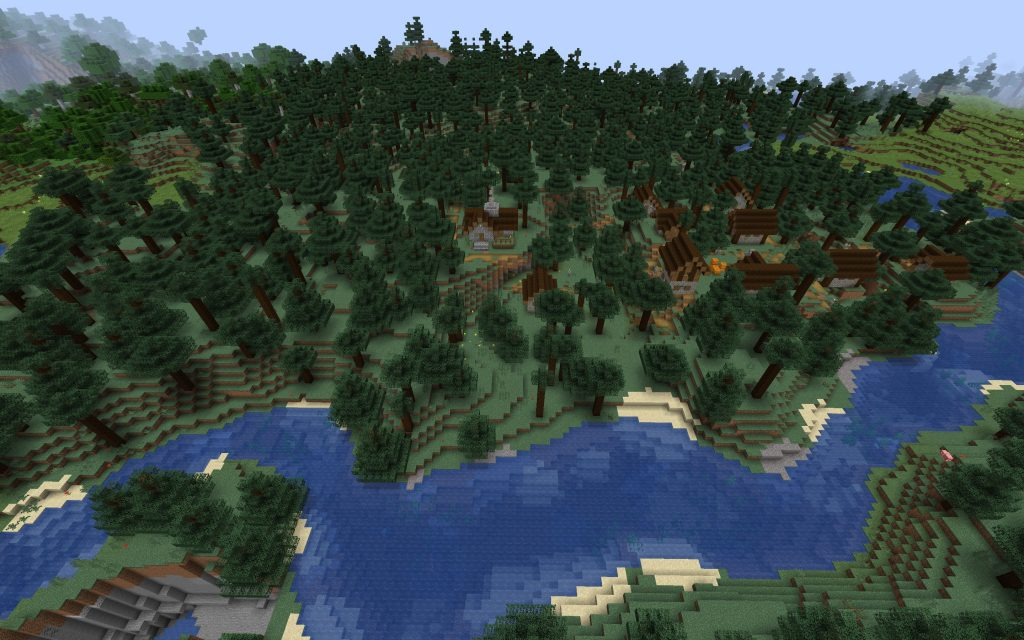 Taiga Village from Above Spawn