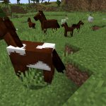Minecraft 1.14 Ultimate Farm Spawn Seed