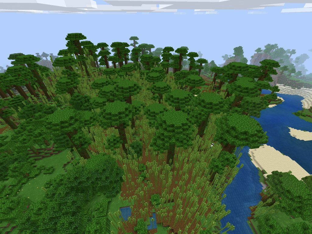Jungle Biome, Bamboo, Ocean