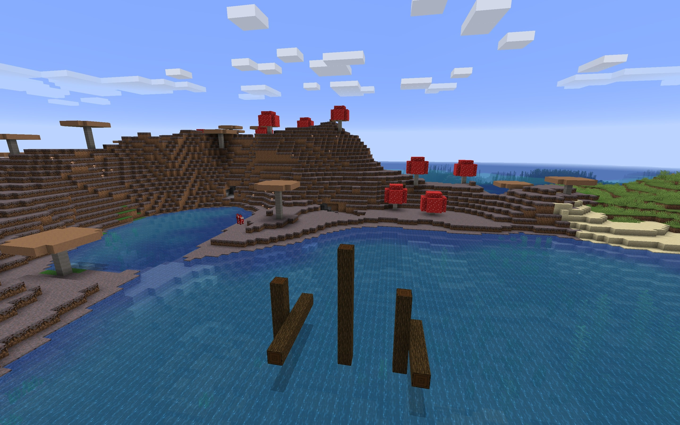 Rare Minecraft Seed Biome at Spawn